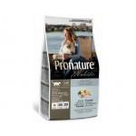 Pronature Holistic Adult อาหารแมวแบบเม็ด สูตรเนื้อปลาแซลมอนและข้าวกล้อง 340 กรัม