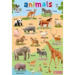 โปสเตอร์ Animals