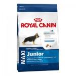 Royal Canin Maxi Junior ชนิดเม็ด สำหรับลูกสุนัข พันธุ์ใหญ่ 1 kg