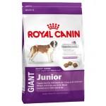 Royal Canin Giant Junior ชนิดเม็ด สำหรับลูกสุนัขพันธุ์ยักษ์ 15 kg