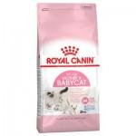 Royal Canin Mother & Babycat ชนิดเม็ด สำหรับลูกแมวอายุ 4 สัปดาห์ถึง 4 เดือน,แมวตั้งท้องและให้นมลูก 4 kg
