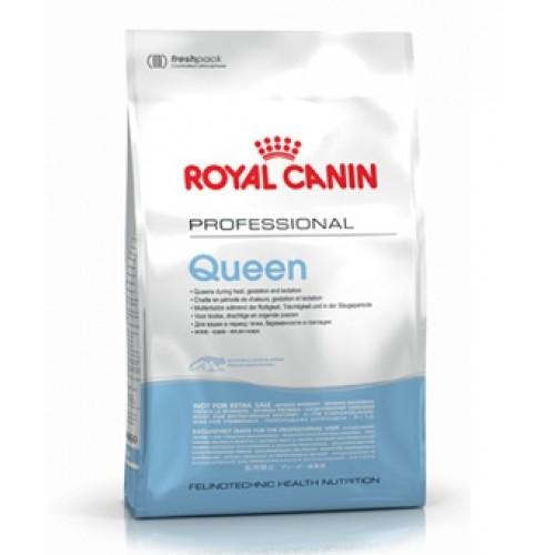 royal canin queen