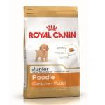Royal Canin Poodle Junior ชนิดเม็ด สำหรับลูกสุนัขพันธุ์พูเดิ้ล ช่วงหย่านม - 10 เดือนขึ้นไป 500 กรัม