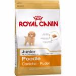 Royal Canin Poodle Junior ชนิดเม็ด สำหรับลูกสุนัขพันธุ์พูเดิ้ล ช่วงหย่านม - 10 เดือนขึ้นไป 1.5 kg