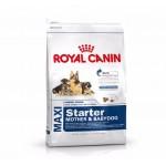 Royal Canin Maxi Starter mother & baby dog ชนิดเม็ด สำหรับแม่สุนัขตั้งครรภ์และลูกสุนัขแรกเกิด พันธุ์ใหญ่ 1 kg