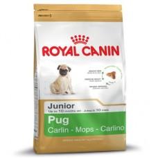 Royal Canin Pug Junior ชนิดเม็ด สำหรับลูกสุนัขสายพันธุ์ปั๊ก อายุไม่เกิน 10 เดือน 1.5 kg
