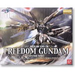 1/100 MG Freedom Gundam Extra Finish