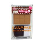 CANMAKE SHADING POWDER NO. 01