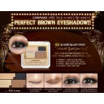CANMAKE PERFECT BROWN EYE NO. 01