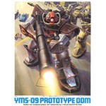 1/144 MSV YMS-09 Proto Type Dom