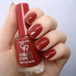 Golden Rose Color Expert Nail Lacquer no.105