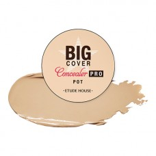 Etude House Big Cover Pot Concealer PRO #Sand