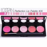 L'Ocean Perfection Lip Palete #20 Lovely Peach Tone