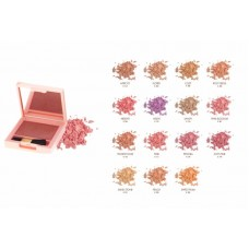 LIFEFORD PARIS CHEEK COLOR C32 (7g)