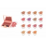 LIFEFORD PARIS CHEEK COLOR C19(7g)