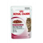 Royal Canin Instinctive in jelly ชนิดเปียก สำหรับแมวโต 85 g