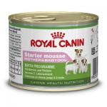 Royal Canin Starter mousse ชนิดเปียก อาหารอ่อนสำหรับแม่สุนัขตั้งท้องและลูกสุนัข ช่วงเริ่มเลียอาหาร 195 กรัม