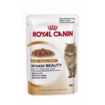 Royal Canin Intense Beauty in jelly ชนิดเปียก สำหรับแมวโต 85g