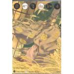 ฮิคารุเซียนโกะ Big Book 04