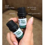 SKINPLANTS Tea Tree Oil (100% Pure Essential Oil ) 3ml
